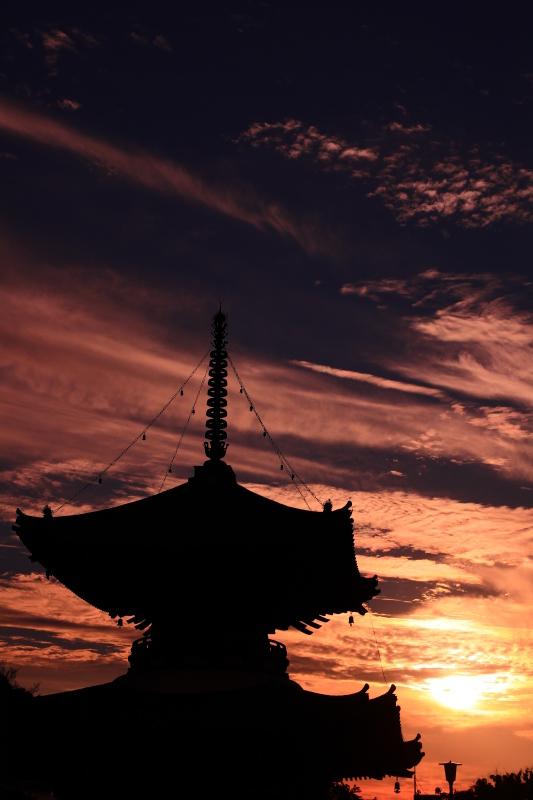夕陽丘の琥珀の時間_f0209122_14034003.jpg