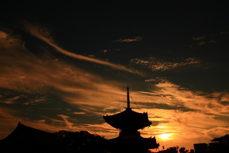 夕陽丘の琥珀の時間_f0209122_14060771.jpg
