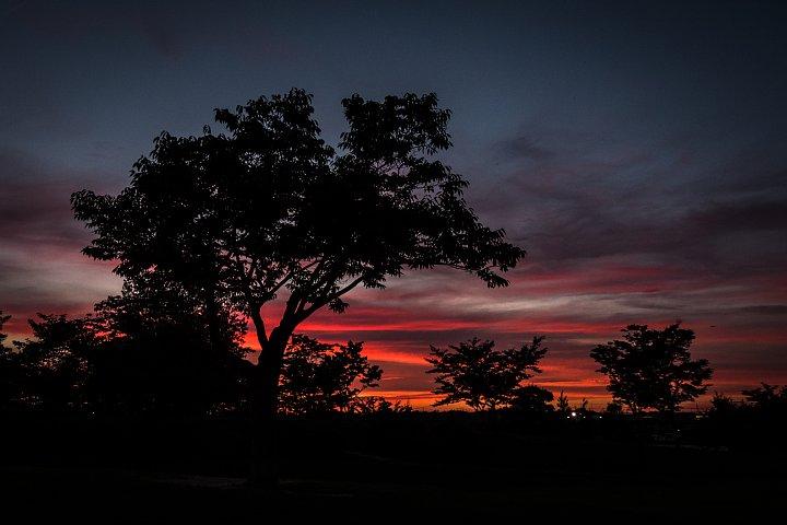 Muggy Sunset_d0353489_2163260.jpg