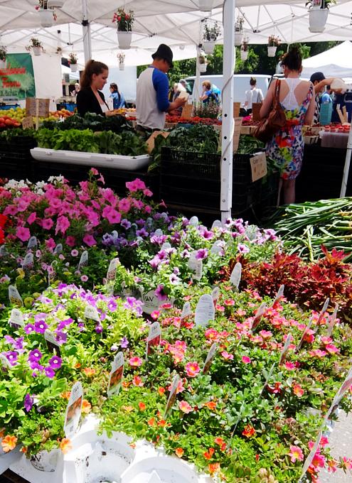 ニューヨークの青空市場で一足お先に夏を体感_b0007805_114510.jpg