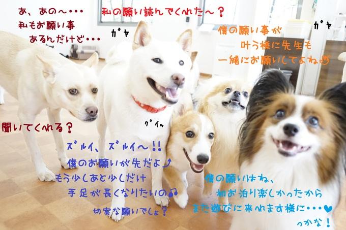 d0220513_1754121.jpg