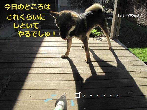 f0143123_13250224.jpg