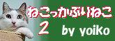b0052375_11024518.jpg