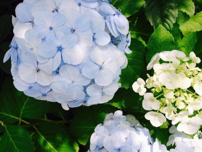 Secret Summer Sale_d0334060_15503126.jpg