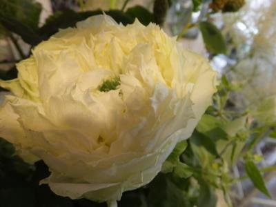 オークリーフ花の教室(石川さんの作品)_f0049672_16142873.jpg