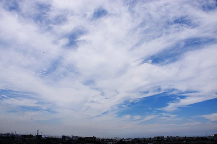 真夏の雲 (積雲と巻積雲)_b0268615_7463990.jpg