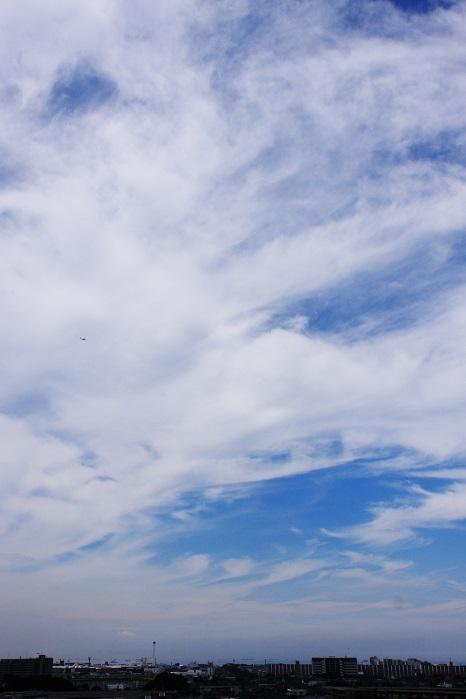 真夏の雲 (積雲と巻積雲)_b0268615_747247.jpg