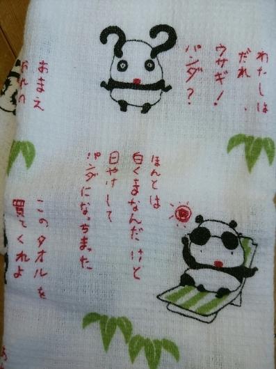 パンダがウチから出ていきました。_f0255704_19335545.jpg