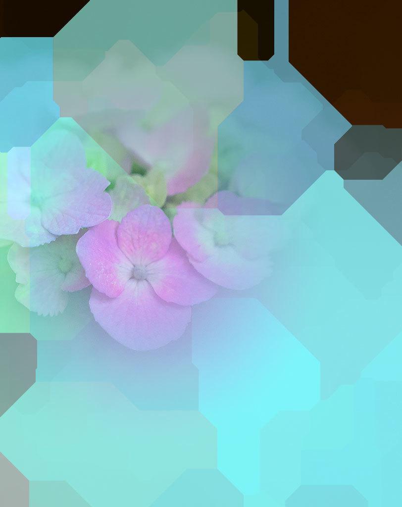 f0160440_15305763.jpg
