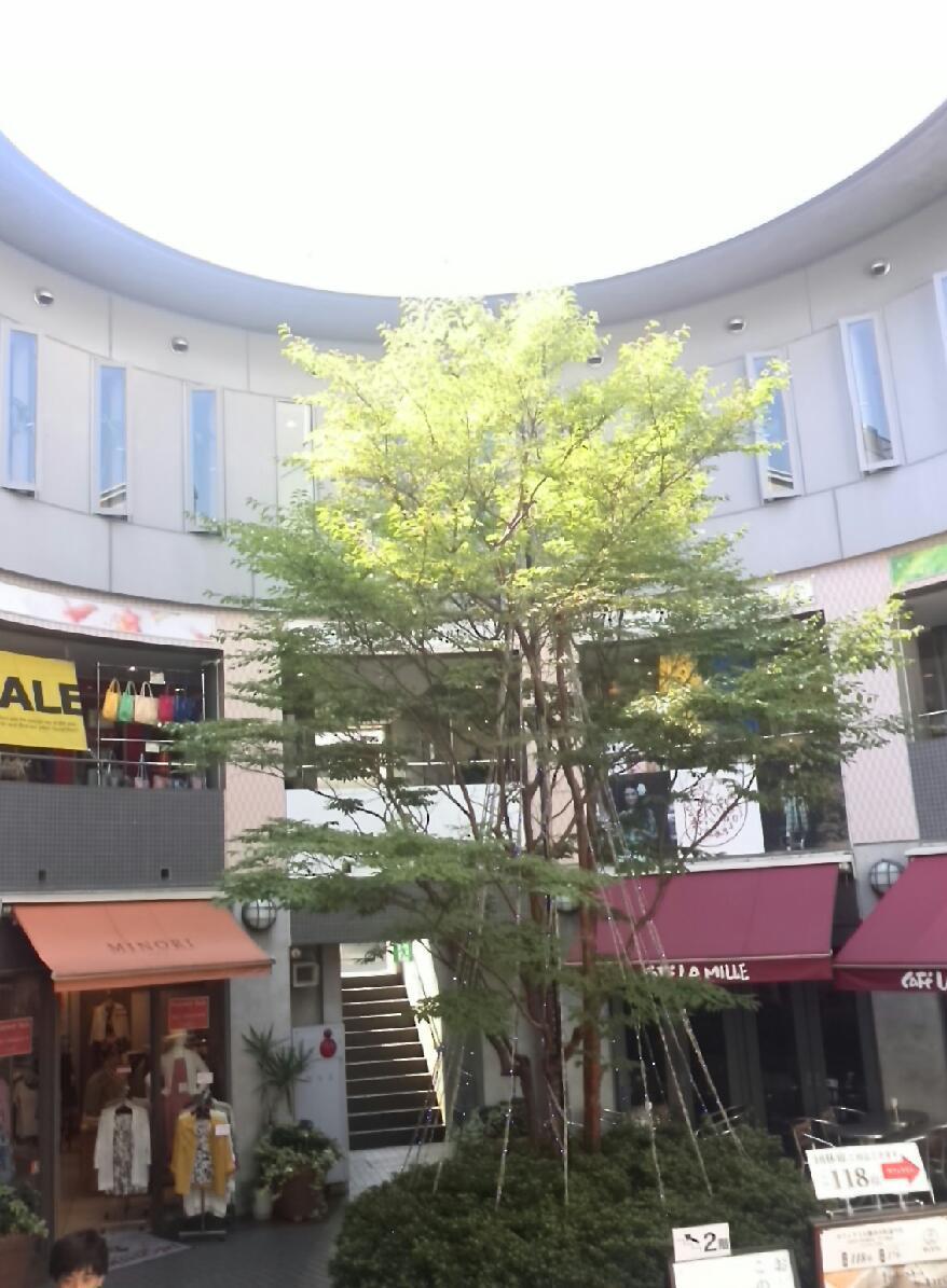 超マニアック!鎌倉散策レポート!?_f0340942_23180361.jpg