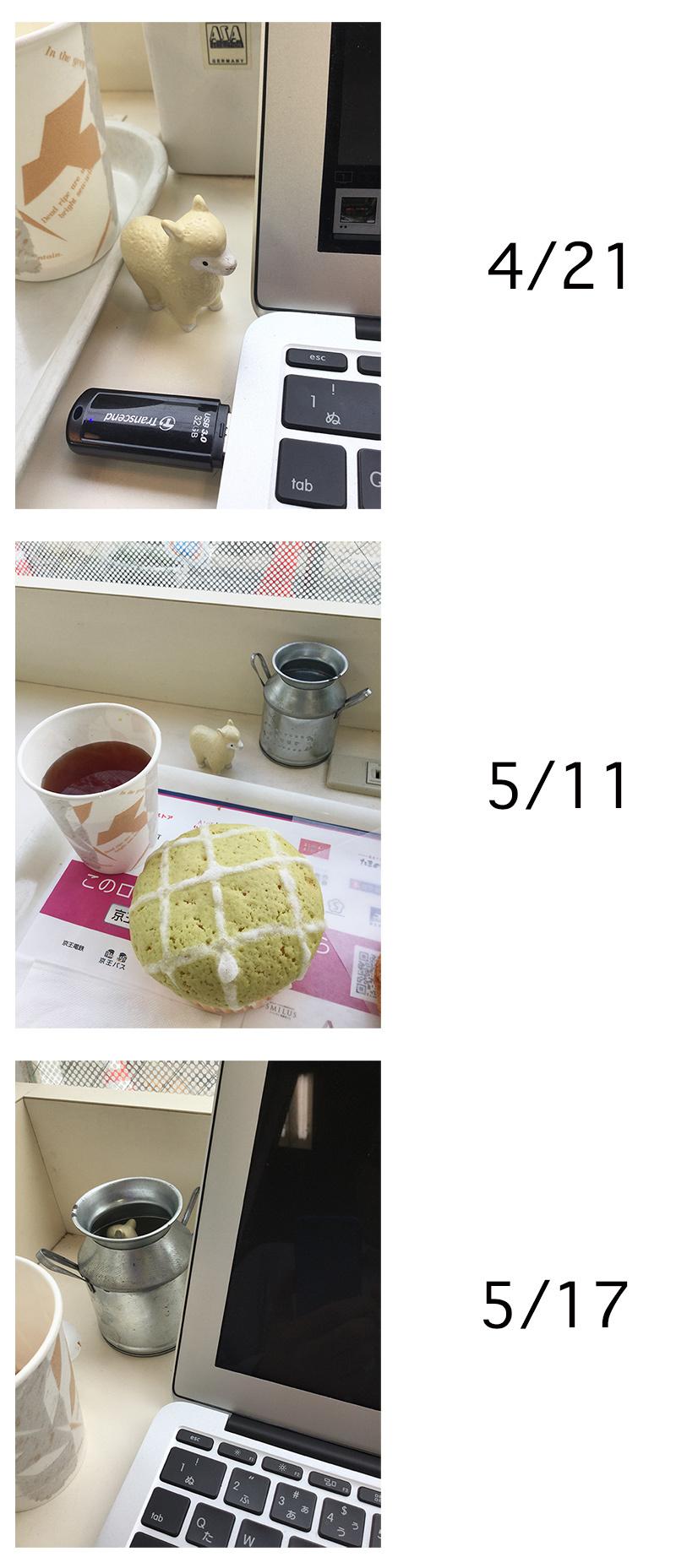 アルパカのいるカフェ_a0003650_22474828.jpg