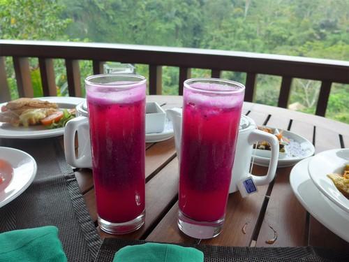 バリ島へ行く③ 〜テラスでの食事が超絶楽しい〜_f0232060_0155320.jpg
