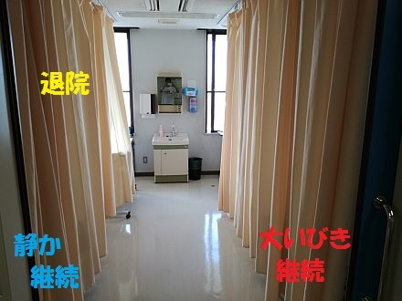 e0146484_20101530.jpg