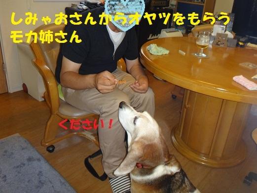f0121712_15251191.jpg