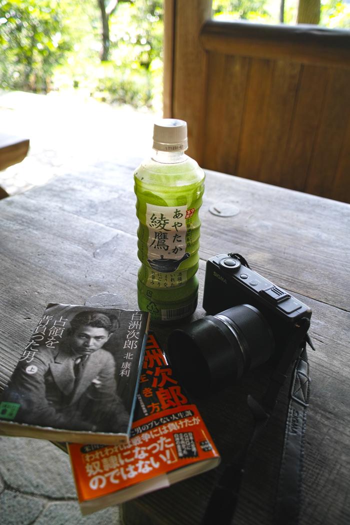 ヤブカンゾウ 夏の公園にて_c0223825_02345797.jpg