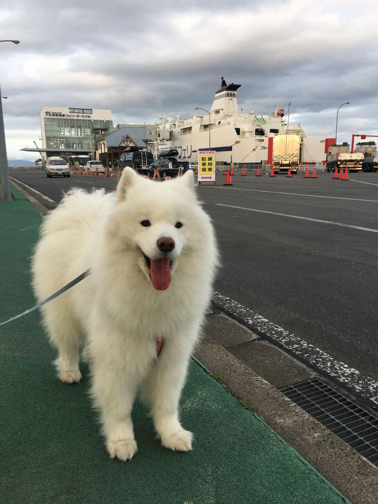 2017年東北経由の北海道旅行 その1_f0128542_2395224.jpg