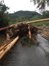 2017年7月5日の朝倉市の大雨の影響。_f0018099_21124100.jpg