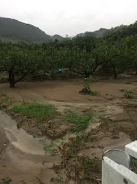 2017年7月5日の朝倉市の大雨の影響。_f0018099_21131242.jpg
