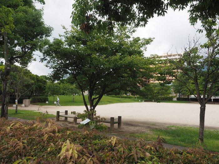 佐伯区民文化センター&五日市中央公園_c0116915_2212772.jpg
