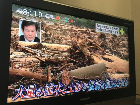 防災対策としての森林や山の管理のあり方_b0199244_08430359.jpg