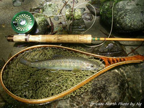 昨日の釣り_d0261148_15184190.jpg