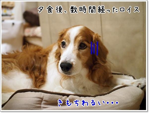 d0013149_00101334.jpg