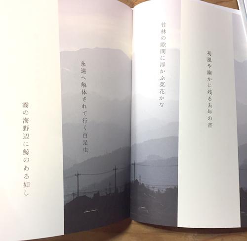 さわら句会10周年記念句集「はるのさかな」〜日本一、ゆるく笑いの絶えない句会_a0017350_07420585.jpg