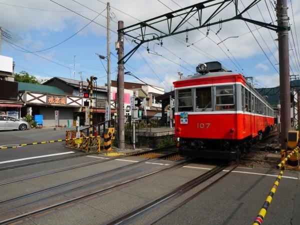 箱根登山電車と箱根ケーブルカー_a0351368_22264494.jpg