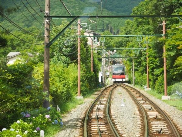 箱根登山電車と箱根ケーブルカー_a0351368_22314808.jpg