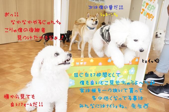 d0220513_16561079.jpg