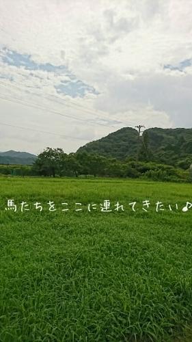 b0187620_20083160.jpg