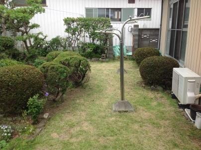 庭木剪定_c0186441_19511344.jpg