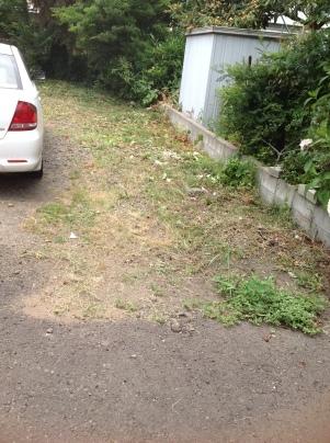 駐車場の除草_c0186441_19585534.jpg