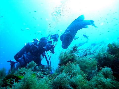 「そこに海があるから」ではなく、「わが人生に目的があるから」海に向かう。_b0141773_16164850.jpg