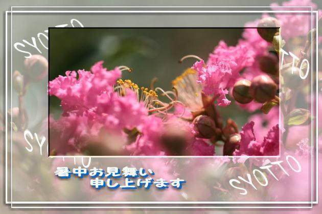 f0164592_10282537.jpg