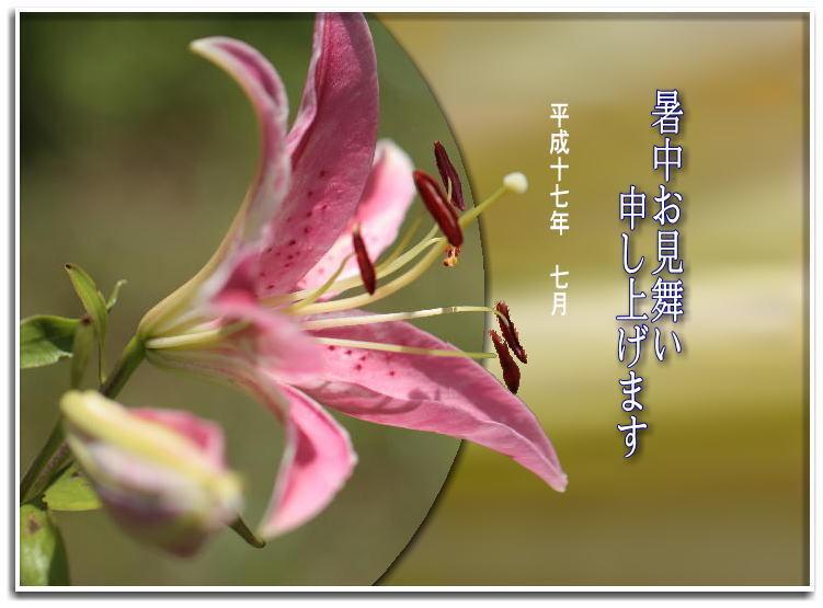 f0164592_10284095.jpg