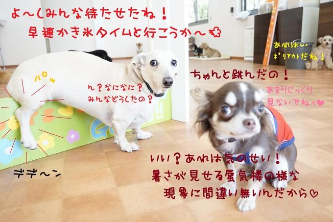 d0220513_17272110.jpg