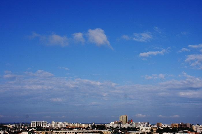 わた雲 (積雲)_b0268615_14123986.jpg