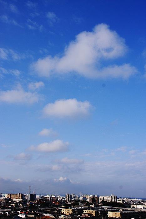 わた雲 (積雲)_b0268615_14125635.jpg