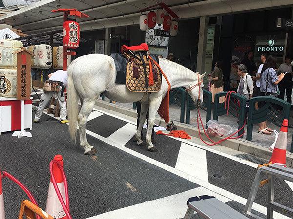 ただいま東急ハンズ京都店に出店中!!_a0129631_11505958.jpg