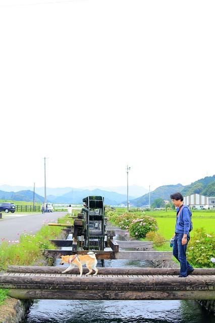 ヒトコマ写真(52)_e0365036_13405127.jpg