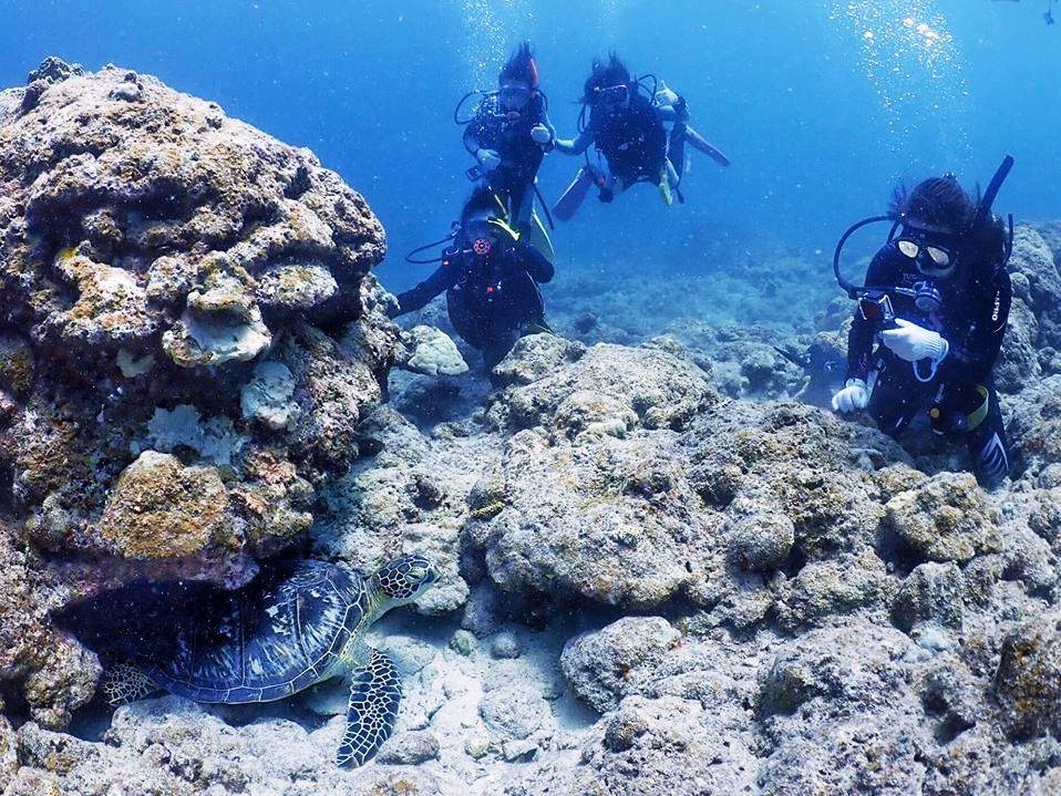 Dive with Hong Kong girls !!_a0189838_18464677.jpg