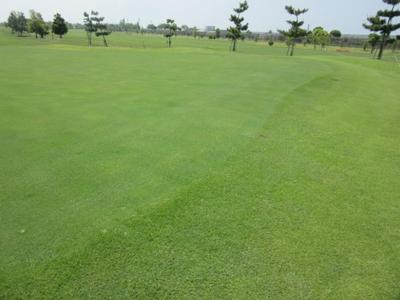 平成29年5月 ゴルフ場 管理作業 その3_d0338682_13301335.png