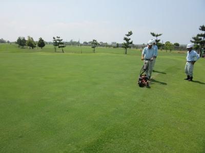 平成29年5月 ゴルフ場 管理作業 その3_d0338682_13304242.png