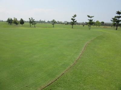 平成29年5月 ゴルフ場 管理作業 その3_d0338682_13310586.png