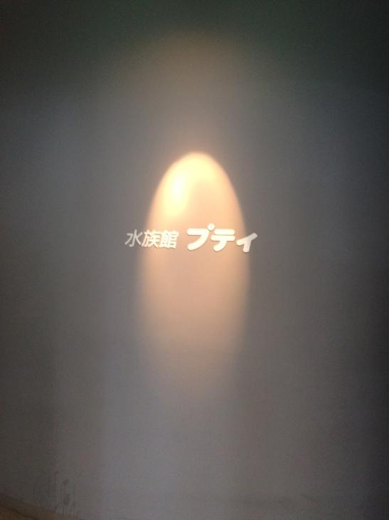 f0147821_22380645.jpg