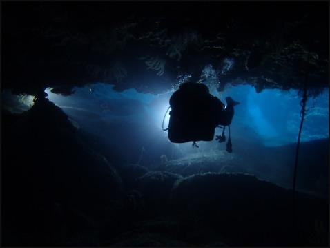 7月13日青の洞窟&残波ファンダイブ_c0070933_21083647.jpg