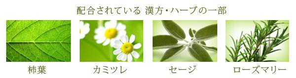 f0354757_13111709.jpg
