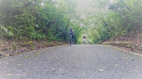 7月9日(日)に開催した 「voyAge cycling\'Meister Otake\'145」の日記♪_c0351373_16001418.jpg