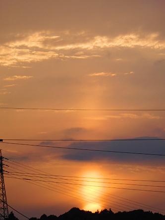 猛暑ですね〜〜〜。_b0057675_23173677.jpg